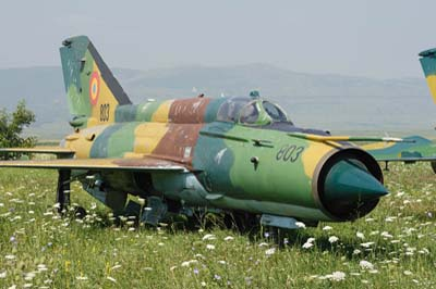 Romanian Air Force, Bacau
