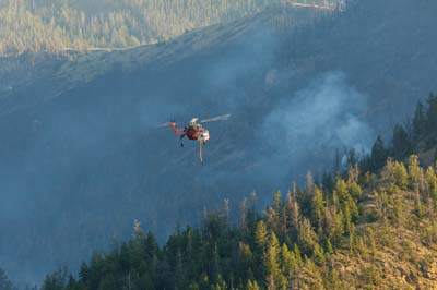 Showshone National Forest Fire