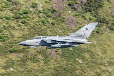 Aviation Photography RAF 41 Squadron